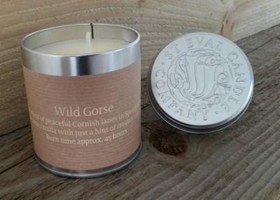 St Eval Tin Candle, Wild Gorse TINGO