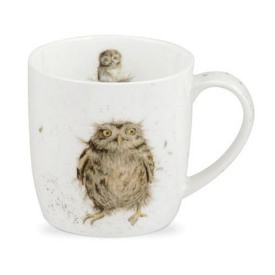Royal Worcester Wrendale Designs What a Hoot Mug 0.31L