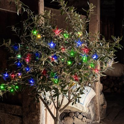 50 Multi Coloured LED Outdoor Battery Fairy Lights
