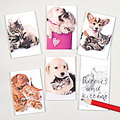Puppy & Kitten Scented Mini Notebooks for Children - Fun Toy Party Bag Filler for Kids (Pack of 12)