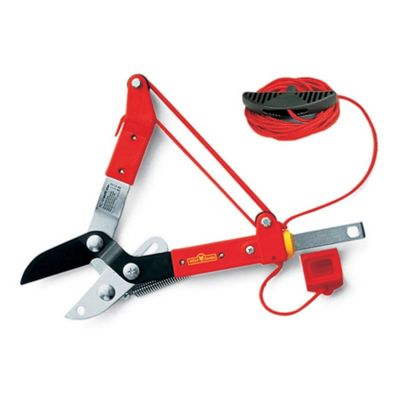 WOLF-Garten RCM Anvil Tree Branch Lopper - Multi-Change Handle sold separately