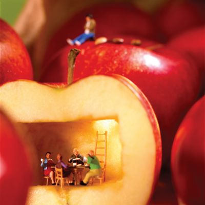 Holy Mackerel Apple House Greetings Card