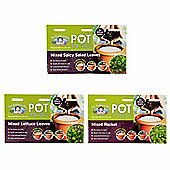 Mr Fothergill's Salad Leaf Garden Plant Pot Toppers - Set of 3