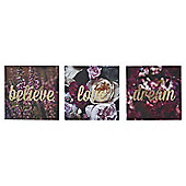 Dream, Love, Believe Triptych Picture