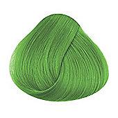 La Riche Spring Green Hair Colour