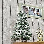 Kaemingk Snow Toronto 75cm Mini Tree