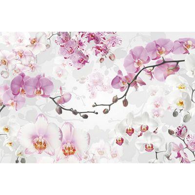 Allure Delicate Blossoms Floral Wallpaper Mural 368 x 248cm