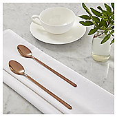 Fox & Ivy Andina Pack of 2 Latte Spoons