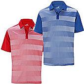 2 Pack Woodworm Golf Fairway Stripe Golf Polo Shirts - Multi