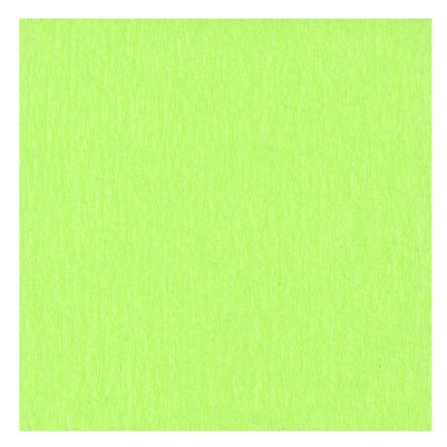 Canson Superior Crepe Paper 50cm x 250cm Light Green