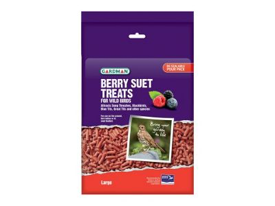 Gardman A04191 Large Berry Suet Treats