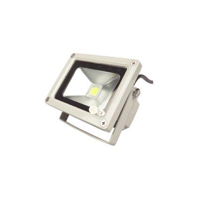 Professional 10W LED Floodlight
