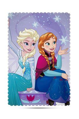 Disney Frozen 'Transparent' Panel Fleece Blanket Throw