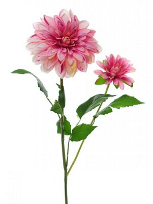 Artificial - Dahlia Spray Two Tone - Pink