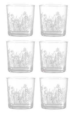 La Porcellana Bianca Babila Glass Etched Tumbler Flowers Design Set of 6 350ml