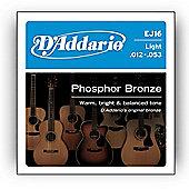 D Addario EJ16 Phosphor Light Acoustic Guitar Strings