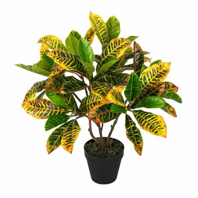 Homescapes Green 'Rushfoil' Artificial Croton Plant with Pot, 65 cm
