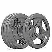 Bodymax Olympic Cast Iron Weight Plates - 4 x 5kg