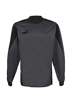 Puma Attacanta Goalkeeper Shirt - Grey