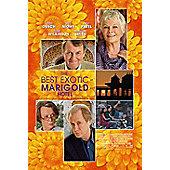 Best Exotic Marigold Hotel DVD
