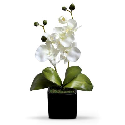 Homescapes Cream Artifical Orchid Flower in Black Pot, 35 cm