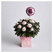 Baby Girl Rose Gift
