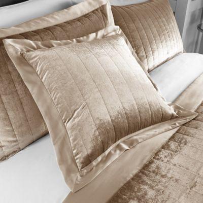 Serene Laurel Champagne Cushion - 43x43cm