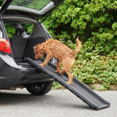 Buy Milo & Misty Dog Pet Ramp - Lightweight & Non-slip
