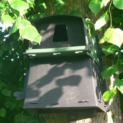 Special Eco Barn Owl Nest Box