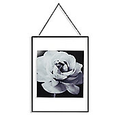 Cabbage Rose Glass Print 40cm x 30cm
