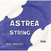 Astrea M167 Cello D String - Half to 1/4