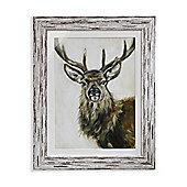 Highgrove Framed Print 50cm x 40cm