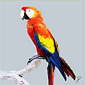 Birthday, Anniversary Greetings Card - Parrot Animal Design - Blank