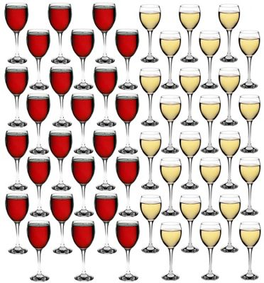 Red & White Wine Glasses - 48 Piece Party Pack - 340ml / 245ml