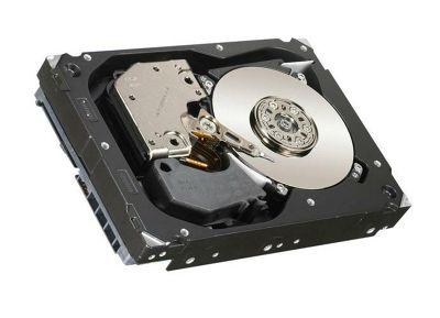 Hewlett-Packard 300 GB SAS Internal Hard Disk Drives