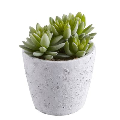 buy artificial succulent plant from our artificial flowers. Black Bedroom Furniture Sets. Home Design Ideas
