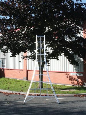 Ladders-Online Trade 3.0m (9.84ft) Standard - Garden Hedge Cutting Tripod Ladder