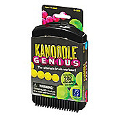 Learning Resources Kanoodle Genius Puzzle