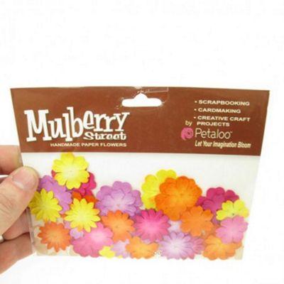 Mulberry St. - Fuschia/Orange/Yellow/Lavender