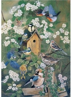 RSPB - The Bird House - 1000pc Puzzle