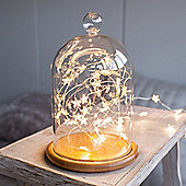 Large Glass Bell Jar with 40 Micro Warm White LED Star Fairy Lights