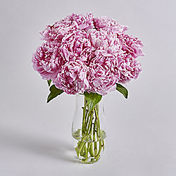 Simply Peony Pink Bouquet