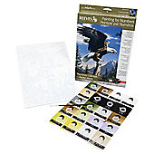 Reeves Artists Collection Medium Paint by Numbers Screaming Eagle - Art Store