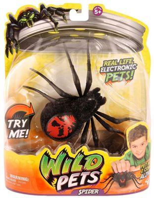Wild Pets Spider - Creepster