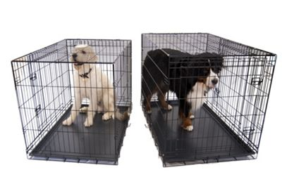 Liberta Saxon Dog Crate