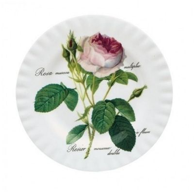 Roy Kirkham Redoute Rose Salad Plate 20cm