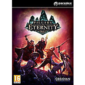 Pillars of Eternity - Hero Edition - PC