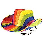 Gay Pride/ Carnival Adult Rainbow Felt Cowboy Hat Fancy Dress Accessory