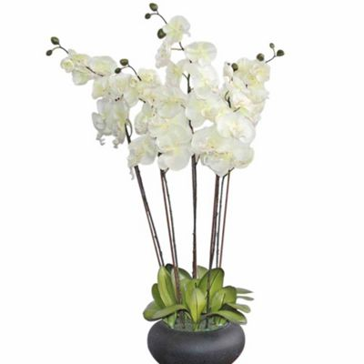 Homescapes Large Oriental Style Cream Orchids in Black Bowl