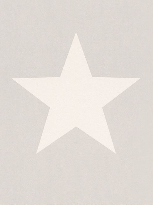 Rasch Star Wallpaper White on Grey 248128